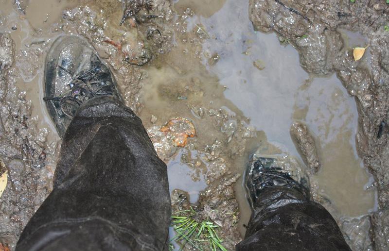 domnaaltae.ru/img/shoes.jpg